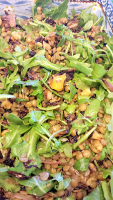 Mix together the olive oil with the orange juice water lentils, roasted oranges and radicchio, toasted walnuts, and chopped mint