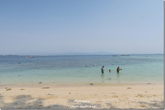 沙巴亞庇馬穆迪島 (7)