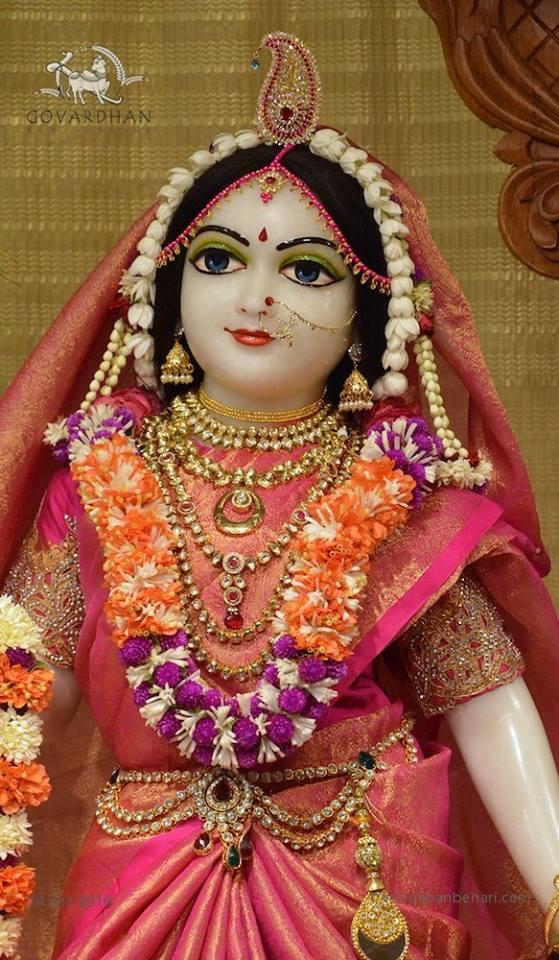 ISKCON Wada Deity Darshan 14 June  2016 (10)