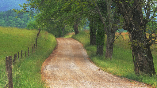 Country Road through Cades Cove, Great Smoky Mountains, Tennessee.jpg