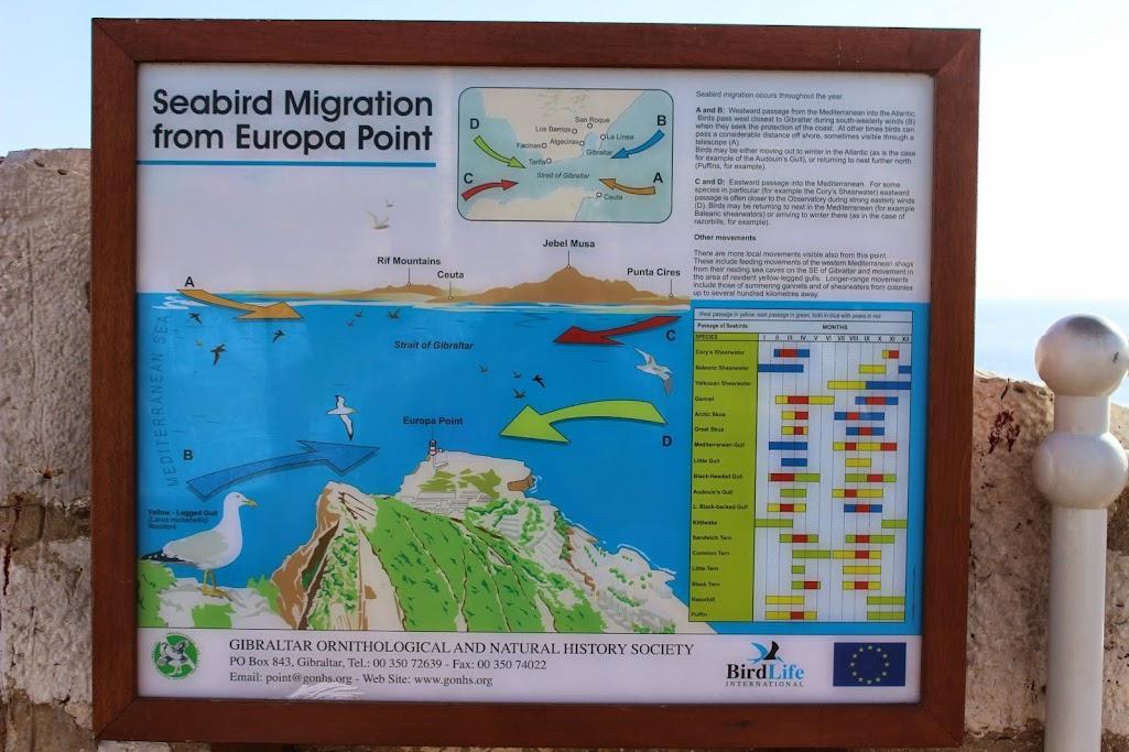 gibraltar - Carregar a bateria da moto até... Gibraltar IMG_4520