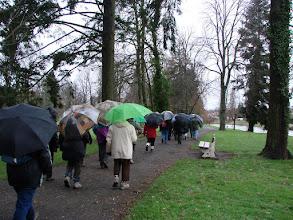Photo: une forêt de parapluies