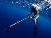 Fishing Nusa Penida, fishing games, Bali Sport Fishing, Bali Fishing, Bali Fishing Trips, spearfishing, spearfishing bali, Speargun, Bali Spearfishing