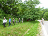 Procházka do Černovického hájku