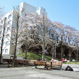 2014 Japan - Dag 2 - danique-DSCN5612.jpg