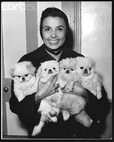 Lena Horne and a bunch of puppies