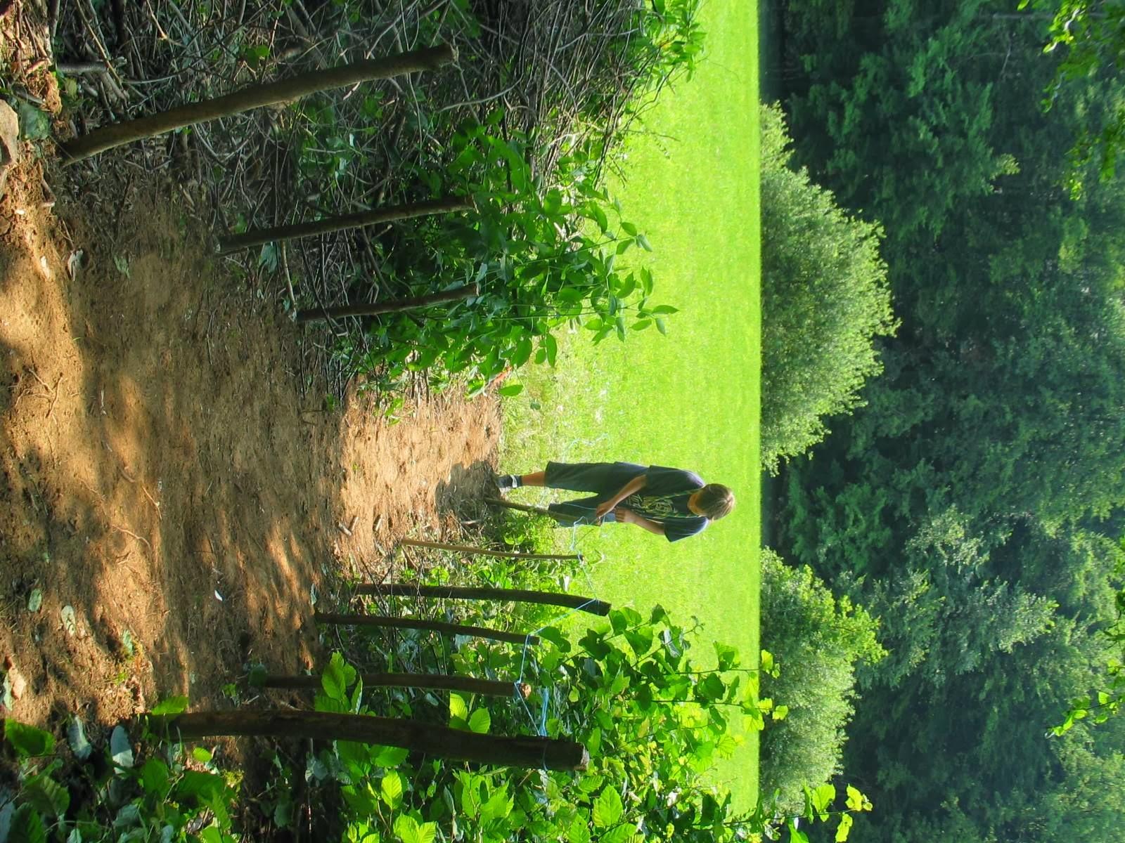 Taborjenje, Lahinja 2006 1.del - IMG_4299.JPG