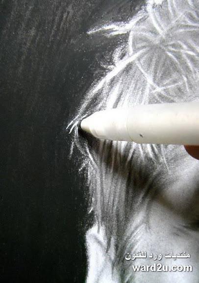 بورتريهات القلم الرصاص شرح تفصيلى