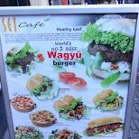 WAGYU burger in Den Haag, Zuid Holland, Netherlands