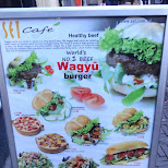 WAGYU burger in Den Haag, Zuid Holland, Netherlands