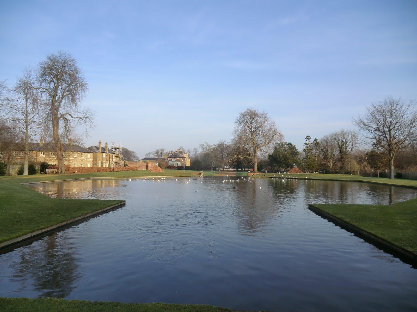 CIMG6534 Upper Pond, the Water Gardens