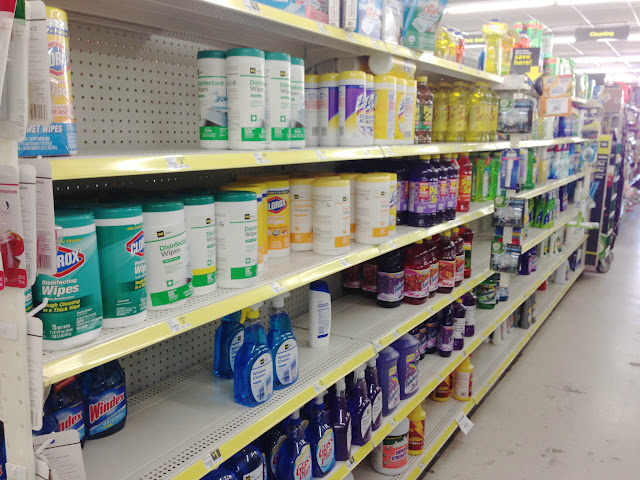 Spring Cleaning On The Cheap With Dollar General