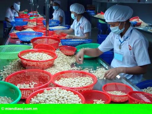 Hình 1: Doanh nghiệp Belarus muốn hợp tác về nông sản với Việt Nam