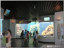 參觀國立海洋生物博物館