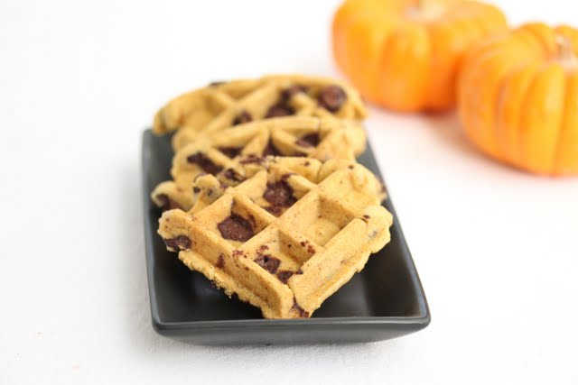 close-up photo of waffle cookies