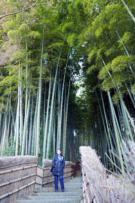 Adashino Nenbutsuji Temple in the Arashiyama District. This bamboo grove path is much quieter than the one we just visited which is more well known (and ok, free since we had to pay to enter this temple) - and it's also the cover of the Lonely Planet guide 13th edition