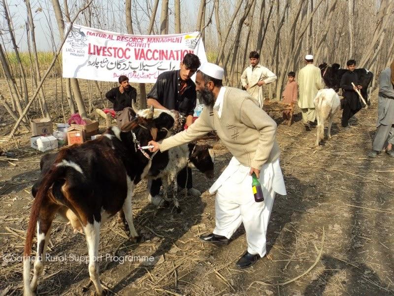 Livelihood Strengthening Programme(LSP) - DSC00694.jpg