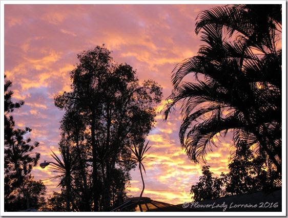 12-30-sunset-4