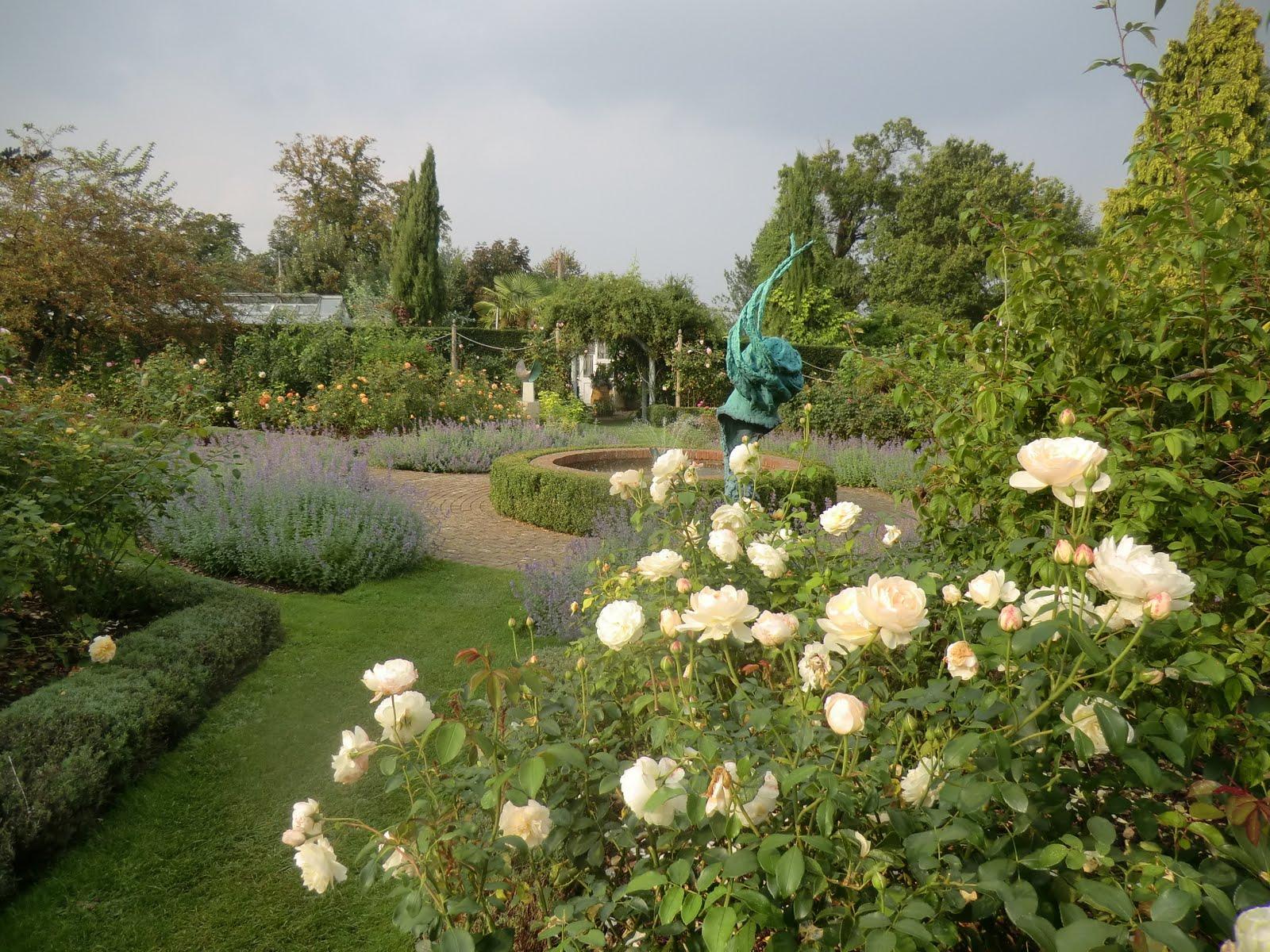 CIMG4655 Rose Garden, Borde Hill
