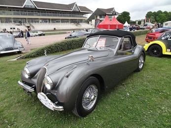 2017.07.01-045 Jaguar 1953