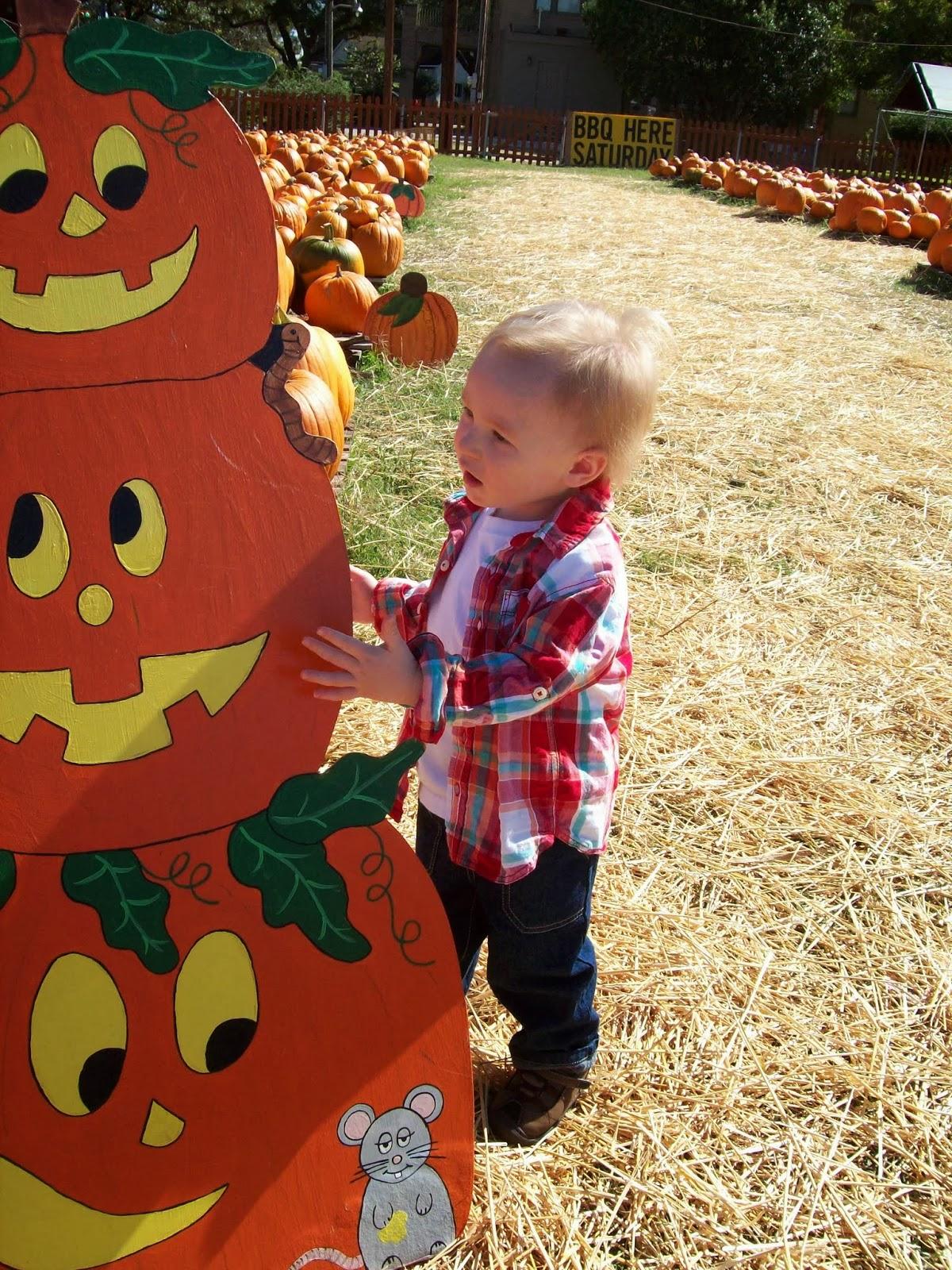 Pumpkin Patch - 114_6547.JPG