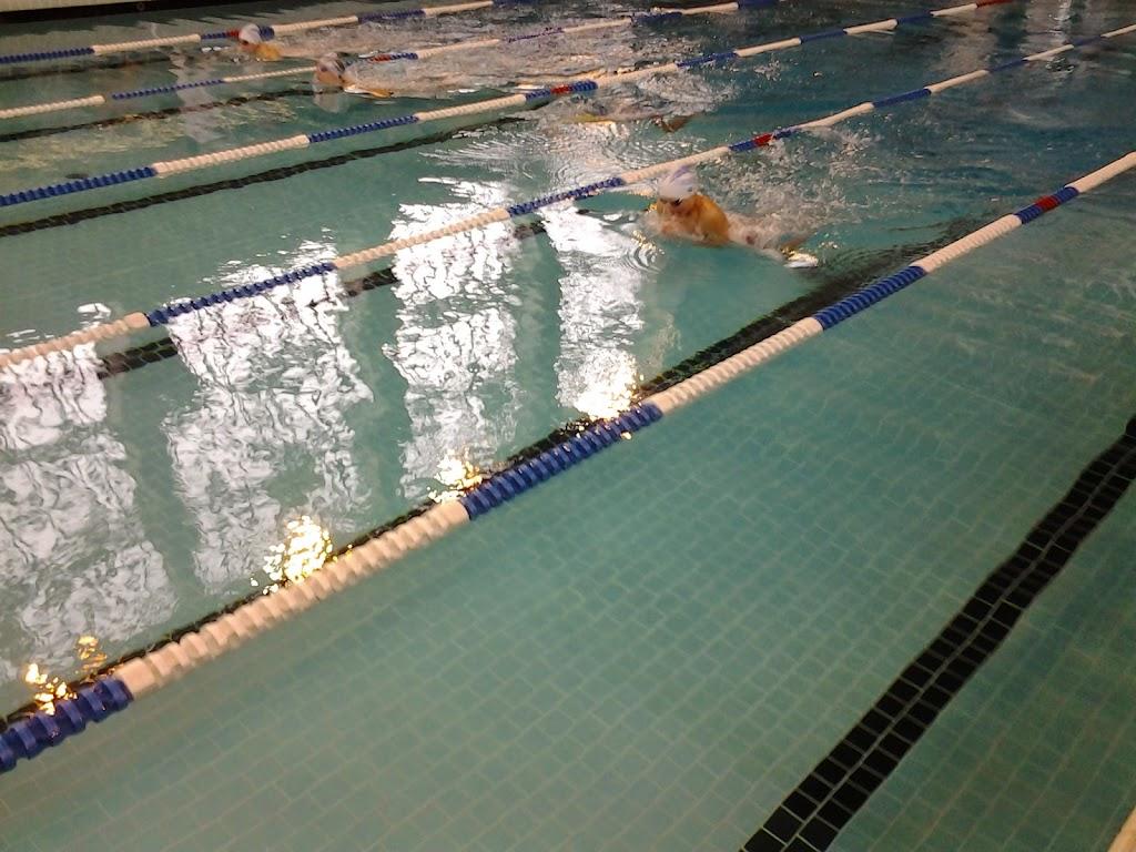 Osez libourne libourne natation - Piscine municipale libourne ...