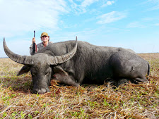 water-buffalo-hunting-14.jpg