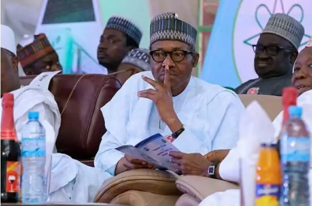 No sane person will vote for Buhari 👉 Ohanaeze
