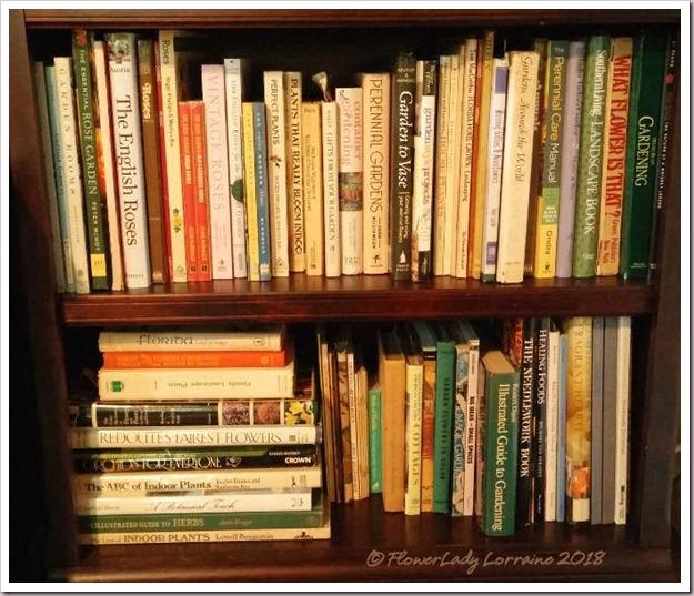 11-03-shelf4