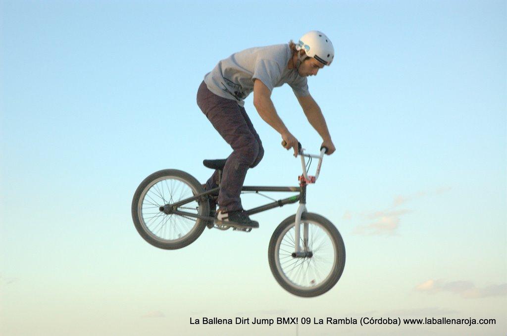 Ballena Dirt Jump BMX 2009 - BMX_09_0150.jpg