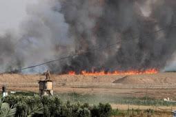Akibat Layangan Berbahan Bakar, 4 Hektare Lahan Pertanian Israel Dilalap Api.