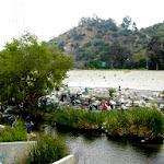 rivercleanup200609.jpg