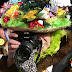 2012-03-11-ledringhem058.JPG