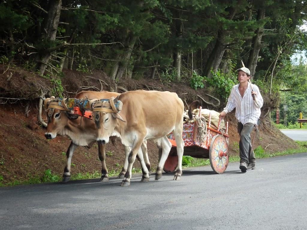 Andere Verkehrzteilnehmer