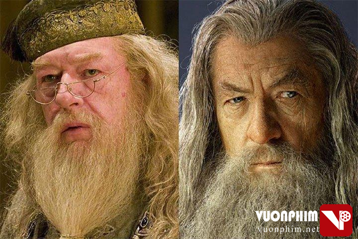 Bạn có phân biệt được 'thầy Dumbledore' và phù thủy 'Gandalf'?