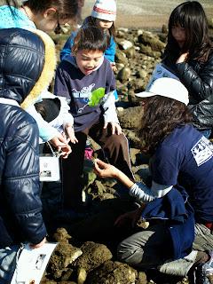 Finding a crab Berkeley Marina field trip