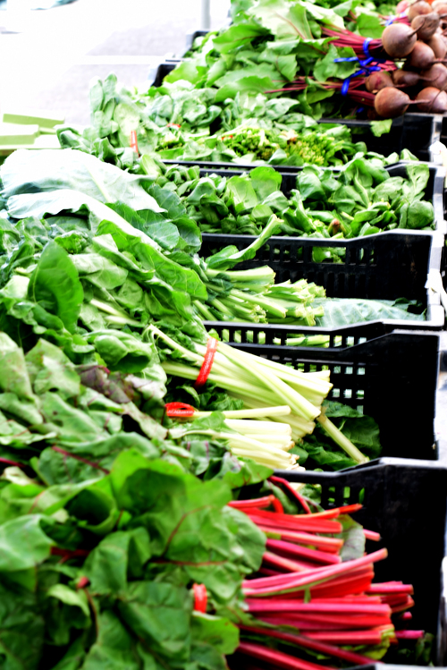 Bins of veggies available at the salem farmers market