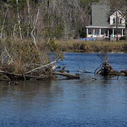 Fowl Marsh from Boat Feb3 2013 104