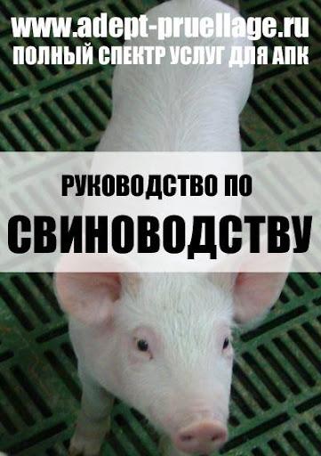 Руководство по свиноводству.