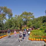 10-26-14 Dallas Arboretum - _IGP4334.JPG