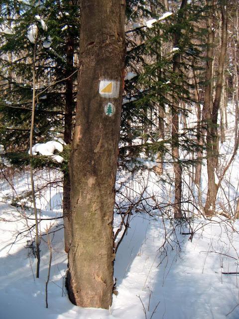 Zajecia terenowe Kolo Ekologow - DSCF9020_1.JPG