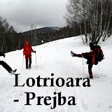 2010-11-28 Lotrioara-Prejba