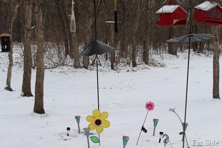 Snow April 8