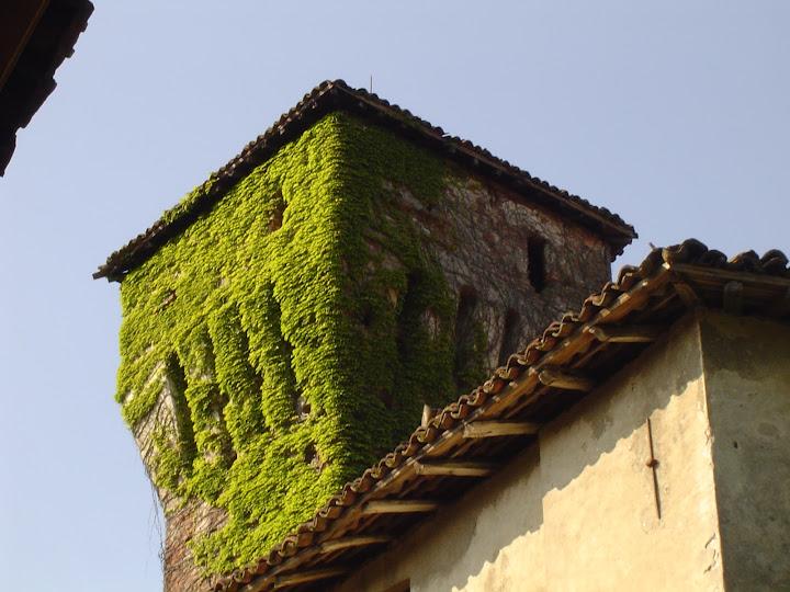 2004 - cuspide torre da via del castello