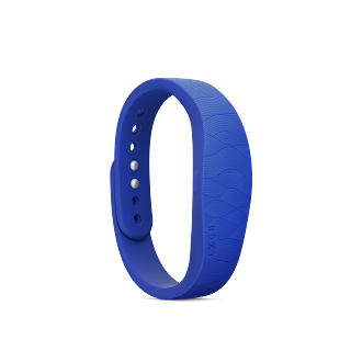 SmartBand with Roxy Product PNG 2.png