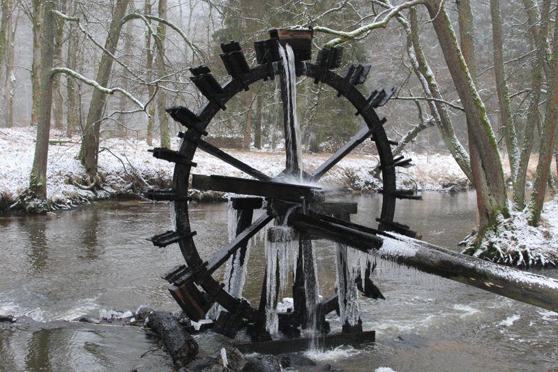 01. Januar 2016: Neujahrswanderung ins Waldnaabtal - IMG_1544.JPG