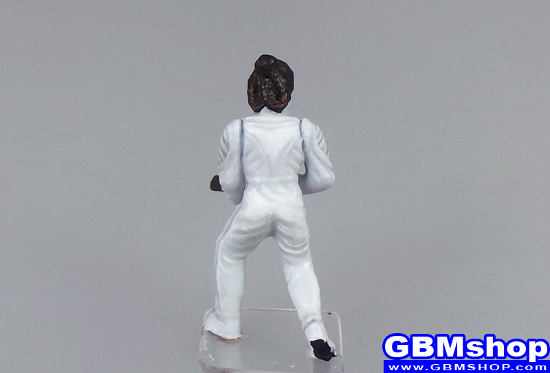 star wars miniature Imperial Assault Princess Leia Organa of Cloud City #19 The Force Unleashed Star Wars Miniatures Custom Customize and Painting