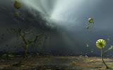 Dream Of Magick Lands