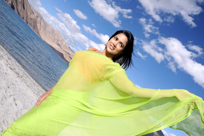 Sameera Reddy saree Image Collections
