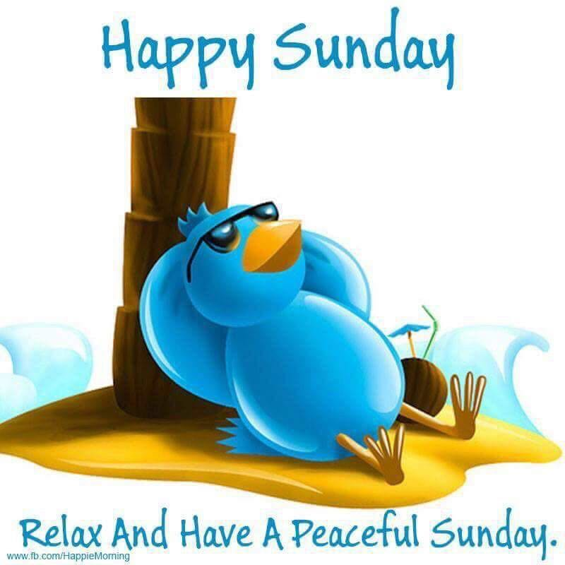 Happy Sunday...